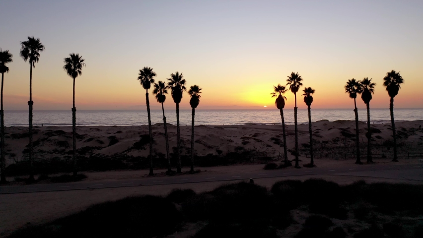 SOUTHERN CALIFORNIA - CIRCA 2020 - Beautiful aerial through palm trees at sunset at a Southern California beach.