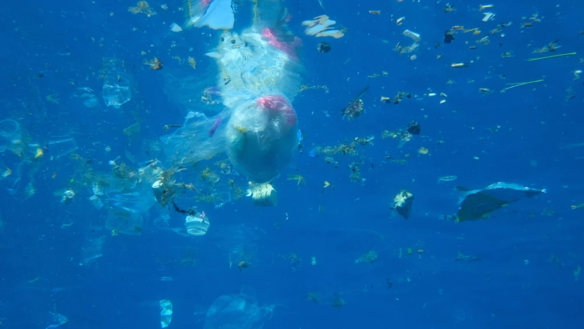 Plastic pollution of the Ocean. A lot of plastic debris drifting under water surface reflecting from the water surface. Plastic bags and cups swims on the blue water | Shutterstock HD Video #1063229524