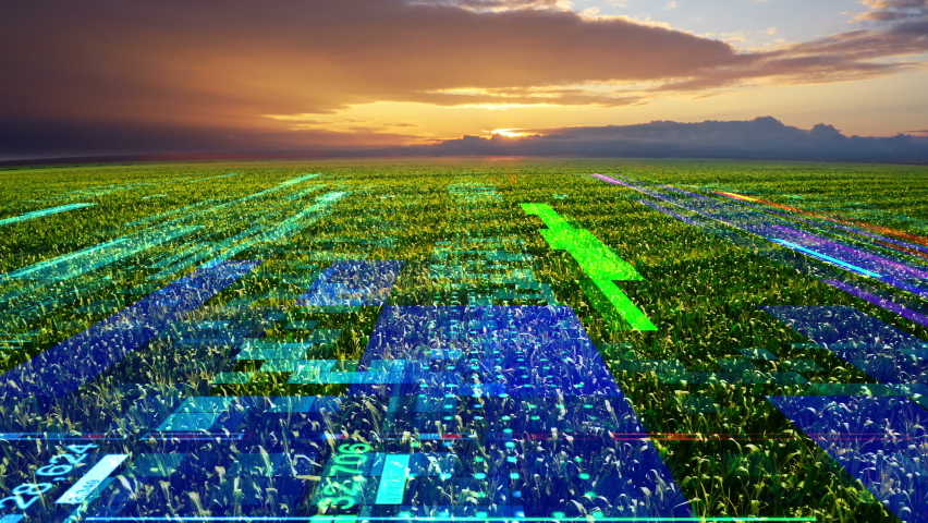 Futuristic concept of Wheat Field. Drone Flying and Analyse Scanning Farm Land Future technology concept Smart Agriculture. Industrial revolution, IOT. Drone flying over a wheat field during sunset 4K Royalty-Free Stock Footage #1063242214