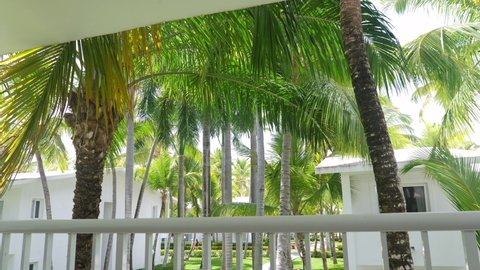 Tropical view on garden with palm trees from hotel balcony. Summer vacations. Travel concept