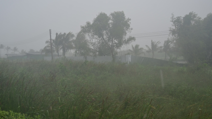 The storm is hitting the forest and heavy rain is falling in Thailand. Nakhon Si Thammarat