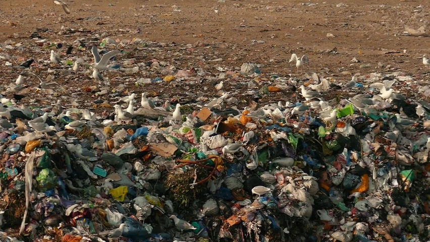 The wheels of a garbage truck are driving through the city dump. Damage to the environment. Pollution concept. Landfill in slow motion. | Shutterstock HD Video #1063331203