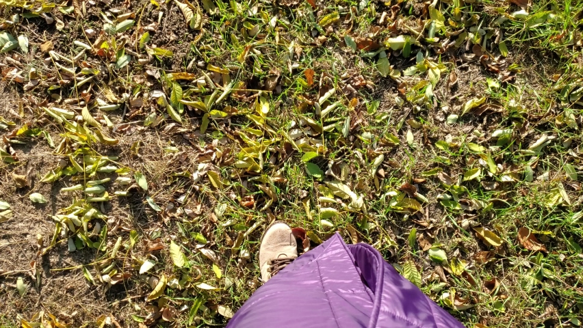 POV female feet stepping by autumn fallen leaves covering green grass lawn in public park. Fast speed time lapse of footsteps by fall foliage on ground. Rolling first person view | Shutterstock HD Video #1063347403