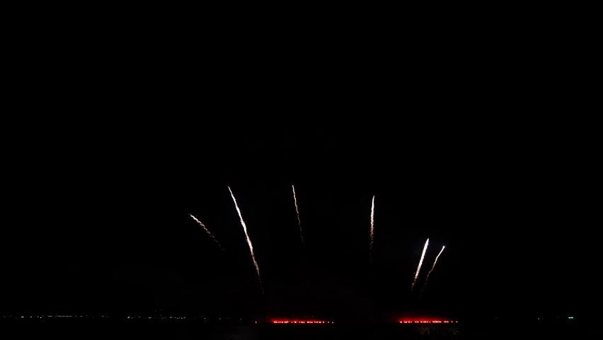 Fireworks colorful in dark night celebrate business success.   Shutterstock HD Video #1063436164