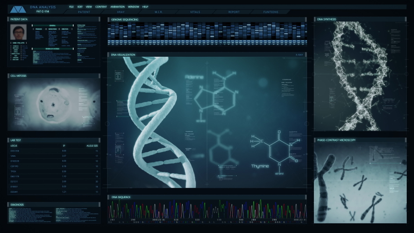 Futuristic technological interface analyzing human DNA. Medical profile of patient showing, genome sequence, DNA visualization, cell mitosis, chromosome animation. Healthcare information. Royalty-Free Stock Footage #1063603780