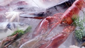 4K UHD Dolly backward: Variety of luxury fresh seafood, Lobster salmon mackerel crayfish prawn octopus mussel and scallop, on ice background with frozen icy smoke. Fresh frozen seafood on ice concept