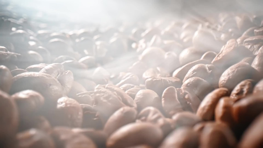 Close up of seeds of coffee beans  | Shutterstock HD Video #1064619472
