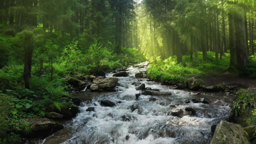 Nature river waterfall forest sun morning magical | Shutterstock HD Video #1065170830