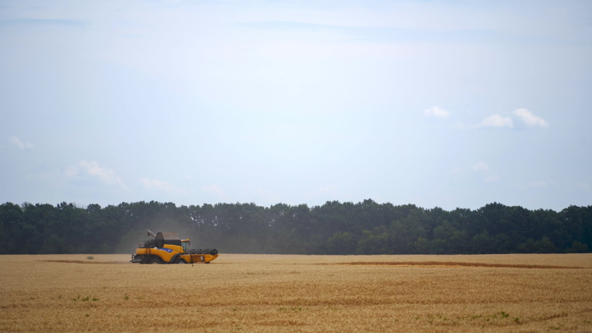 Grain harvesting combine in a sunny day. Yellow field with dry grain. Agricultural technic is working in field. | Shutterstock HD Video #1065598048