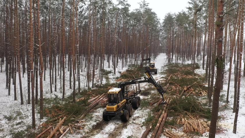 Forestry machines chopping trees - aerial footage | Shutterstock HD Video #1065619120