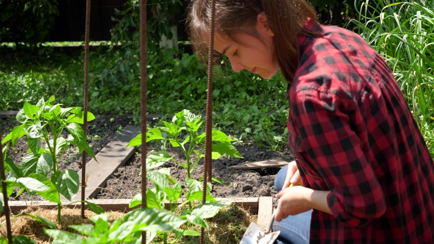 Smiling young woman working in garden and spudding fresh rganic vegetables growing on garden bed. Concept of growing and planting organic vegetables at home. | Shutterstock HD Video #1065620434