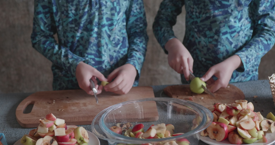 Two funny teenage boys cut apples for processing in electric dryer | Shutterstock HD Video #1065944590