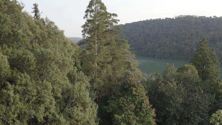 The River Dart Devon England | Shutterstock HD Video #1065948994