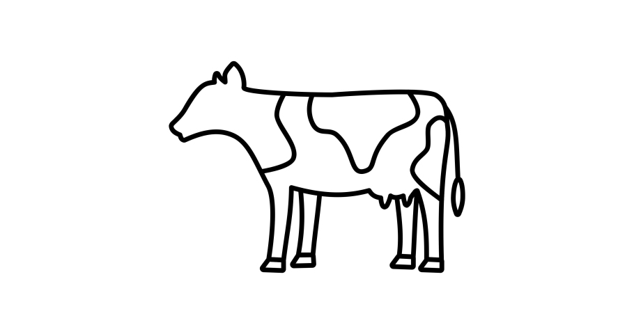 Cow icon animation. For website, banner, motion graphics, apps, and social media posts.  | Shutterstock HD Video #1066032082