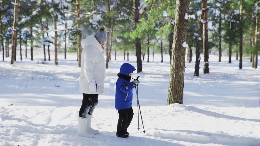 Little boy in blue jacket ski poles and his mother walks in winter park | Shutterstock HD Video #1066052044