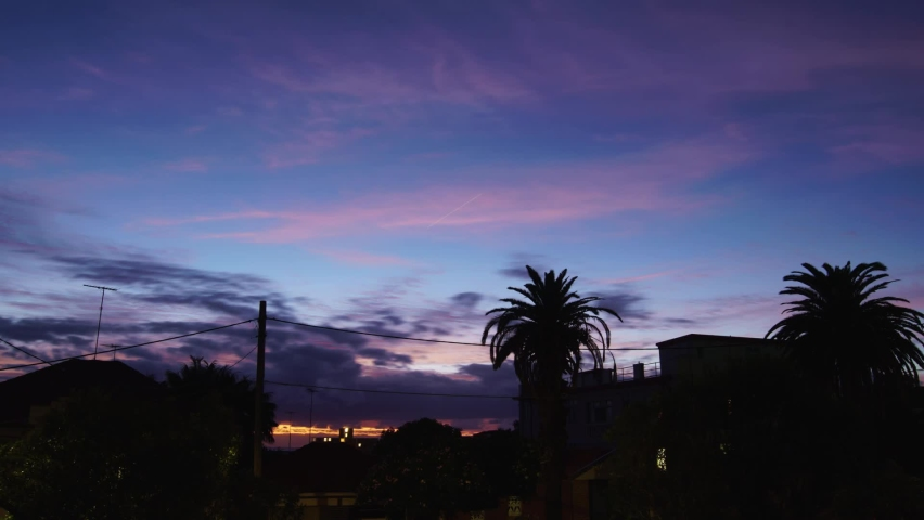 Colourful sunrise time lapse with Palm Tree silhouette. | Shutterstock HD Video #1066052764