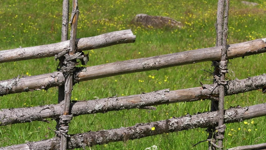 Old wooden fence with colorful wildflowers on a medow in the background. Sun is shining and warm breeze movement. Summer on Swedish farm | Shutterstock HD Video #1066053568