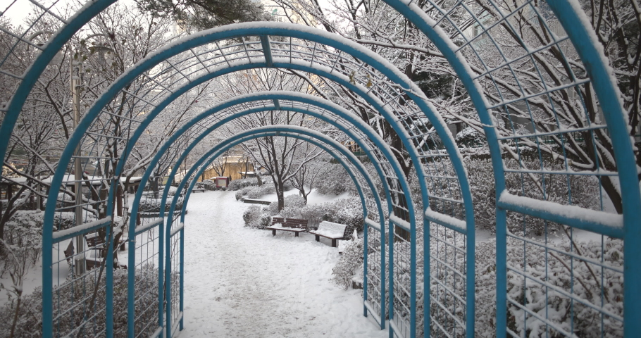 White snow covered trees and benches in the park  | Shutterstock HD Video #1066057411