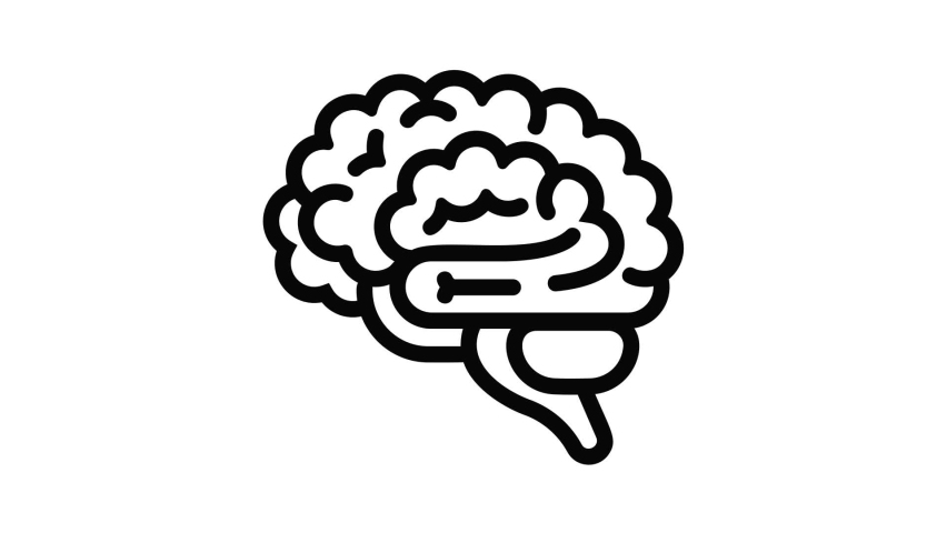 Brain icon animation best object on white background | Shutterstock HD Video #1066070368