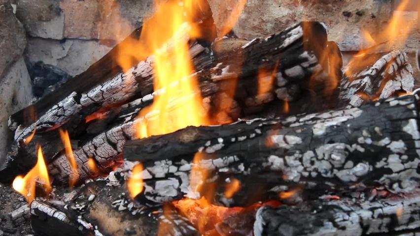 Fire, burning wooden logs in the fireplace | Shutterstock HD Video #1066199803