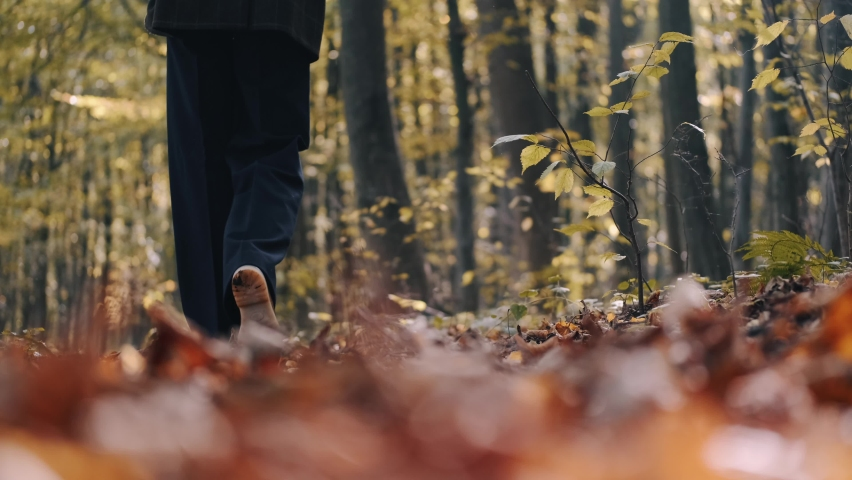 She walks in blue jeans along path park, through forest, strewn fallen autum dry yellow leaves. Leisurely walk fresh air day off. A place to think, alone with your thoughts. Peaceful state | Shutterstock HD Video #1066278580