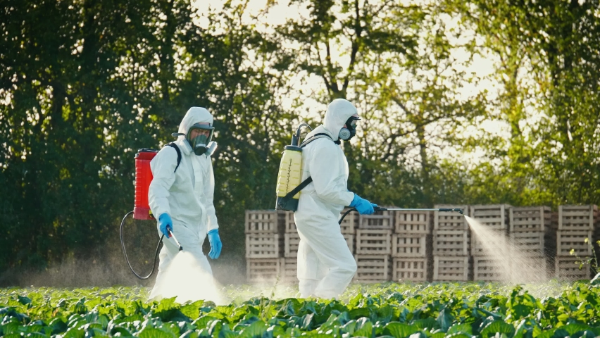 Pest Control Service. Spray Fumigation for Weed Control. Men in Protective Suits with Respirators Spray Toxic Pesticides, Pesticides and Insecticides on Plantations. Industrial Chemical Agriculture. Royalty-Free Stock Footage #1066734334