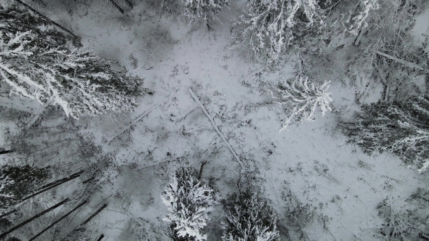 Aerial view of a frozen forest with snow covered trees at winter. Flight above winter forest in Finland, top view. | Shutterstock HD Video #1066847104