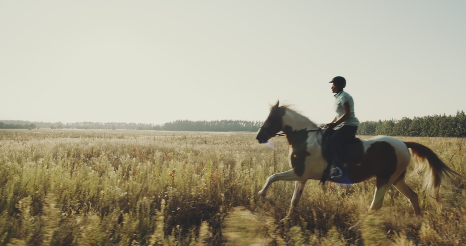 Happy kids at the summer field, horseback riding far away from the city. Beautiful movie about horse riding camp, playful children learn how to care about horses and how to prepare for riding.
