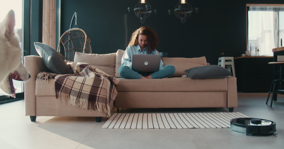 Beautiful happy young African American freelancer woman working from home using laptop, big white Swiss dog walks by. | Shutterstock HD Video #1067703524