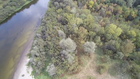 View from the drone. River, sandy beach, field, forest.