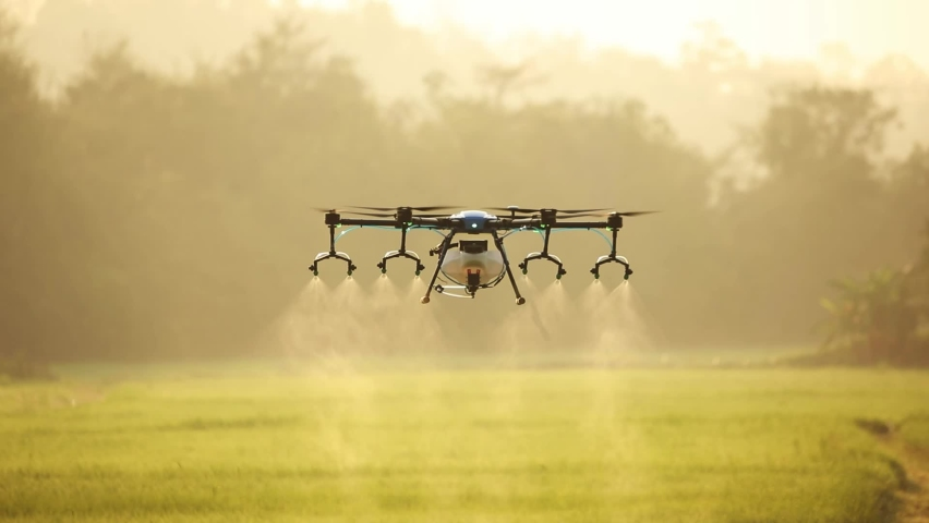 Agriculture drone fly to sprayed fertilizer on the rice field. industrial revolution. agriculture technology. Royalty-Free Stock Footage #1068379049