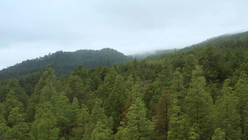 Flight over beautiful mountain nature in La Palma, Spain | Shutterstock HD Video #1068441518