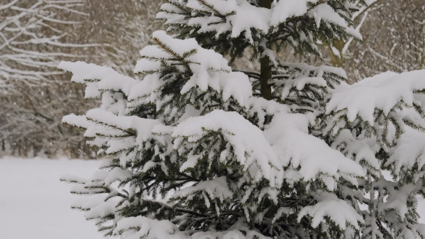 Slow motion shot of heavy snowing caused by lake effect   Shutterstock HD Video #1068618524