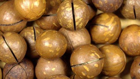 Macadamia nuts rotation background. Close up