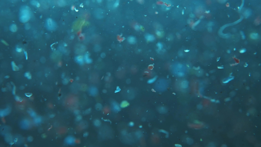 microplastics in water. plastic fragments or particles in ocean. ocean pollution by single-use plastics. environment, ecology, water, earth, slow motion Royalty-Free Stock Footage #1070157145