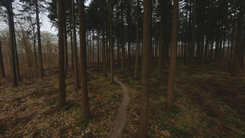 Drone Flight Rushing Through Trees Over Winding Narrow Path Towards Cyclist | Shutterstock HD Video #1070335888