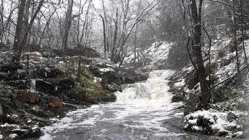 Wild forest river during snowfall in winter. Hoegne in Ardennes, Belgium. Beauty in nature.  Royalty-Free Stock Footage #1070512291
