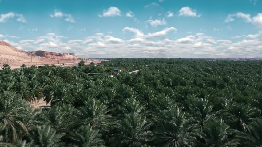 The city of Al-Ahsa is located in eastern Saudi Arabia. It is characterized by palm trees and heritage sites Royalty-Free Stock Footage #1070594473