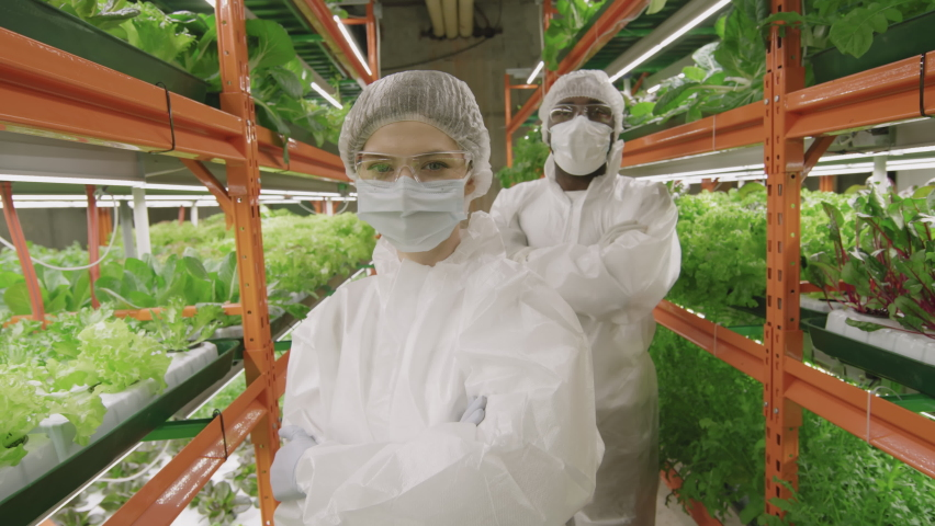 Medium portrait of diverse couple of professional agronomic engineers in protective coveralls, cap, mask and eyeglasses standing with hands folded and looking at camera working in vertical farm | Shutterstock HD Video #1070634352