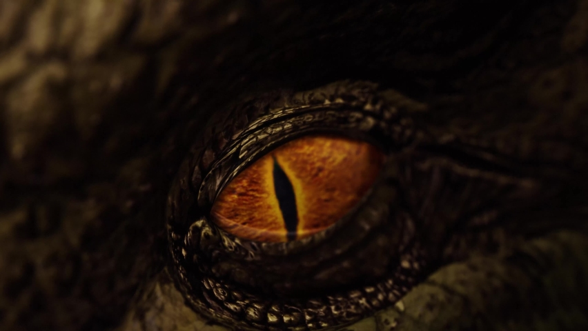 Close up of a dragon's eye opening and looking around - as dragons do Royalty-Free Stock Footage #1070765365