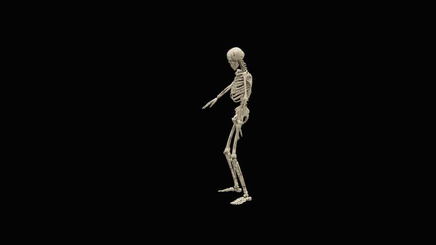 Halloween day. Ghost character bone dancing. 3d rendering, realistic CGI,3d mapping cartoon, Included in the end of the clip with Alpha matte. | Shutterstock HD Video #1070765419