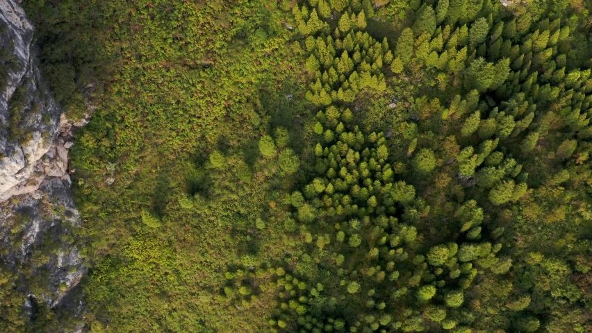 Chinese mountainous forest landscape, aerial top down view | Shutterstock HD Video #1070792098