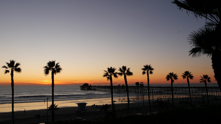 Palms silhouette on twilight sky, California USA, Oceanside pier. Dusk gloaming nightfall atmosphere. Tropical pacific ocean beach, sunset afterglow aesthetic. Dark black palm tree, Los Angeles vibes. | Shutterstock HD Video #1070930935