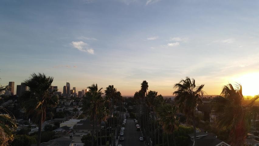 Beautiful palm tree lined street in Los Angeles | Shutterstock HD Video #1070937565