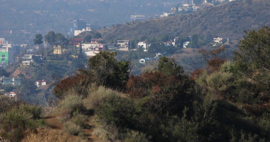 Homes in the Los Angeles Hollywood Hills on a hazy day with sunlight. | Shutterstock HD Video #1070950426