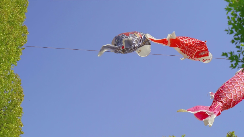 Carp streamer and blue sky landscape | Shutterstock HD Video #1071122143