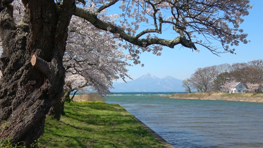 Lake Inawashiro and Mt. Bandai in spring (Koriyama City, Konan Town) | Shutterstock HD Video #1071139393