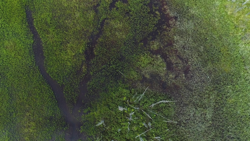 Aerial top down view pulling back from Alaskan wetlands | Shutterstock HD Video #1071142087