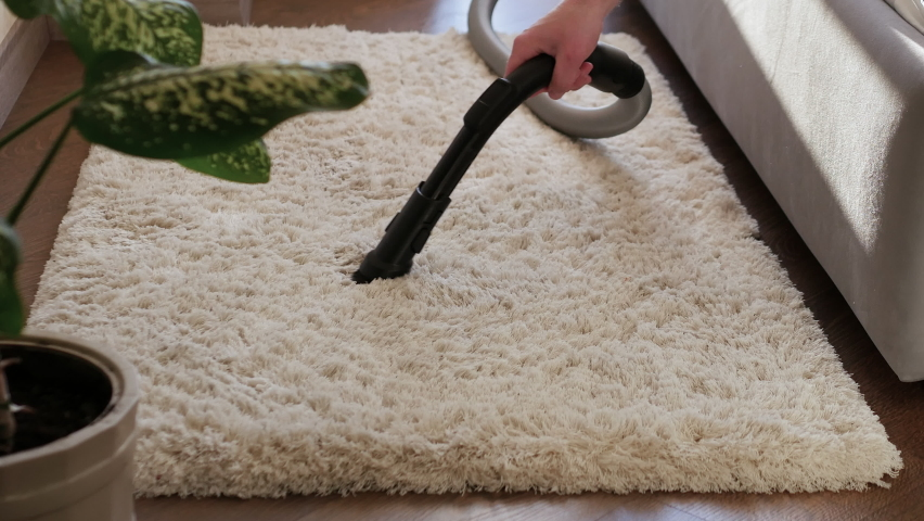 Cleaning of fleece carpets, cleaning of fluffy carpets with a vacuum cleaner. Cleaning of hotel apartments