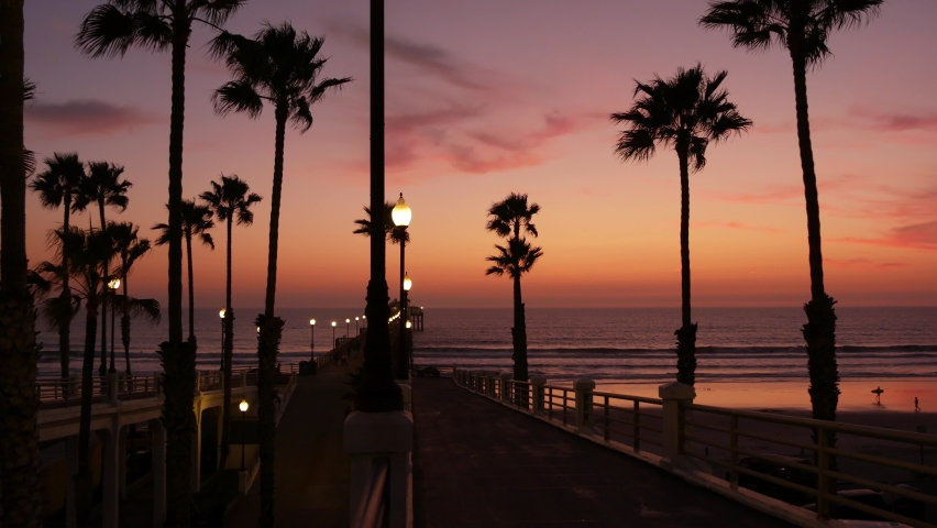 Palms silhouette on twilight sky, California USA, Oceanside pier. Dusk gloaming nightfall atmosphere. Tropical pacific ocean beach, sunset afterglow aesthetic. Dark black palm tree, Los Angeles vibes.   Shutterstock HD Video #1072164305
